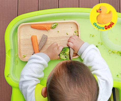 Este AUTODIVERSIFICAREA metoda ideala pentru bebelusul tau?