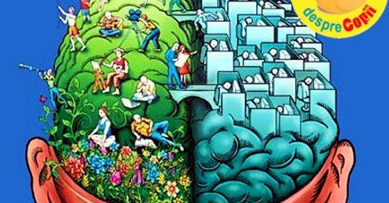 Creierul unui adolescent: despre vulnerabilitate, stres,�