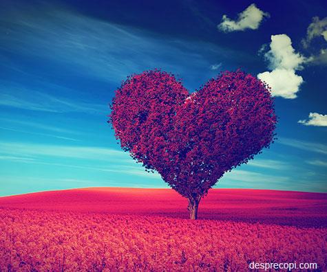 Dincolo de iubire intr-o alta dimensiune