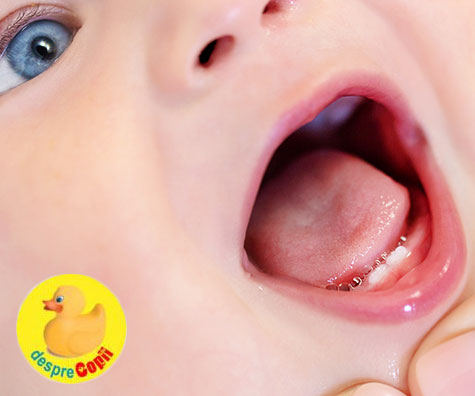 Despre cresterea dintisorilor