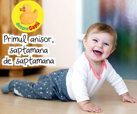 Primul an de viata al bebelusului in 52 de saptamani