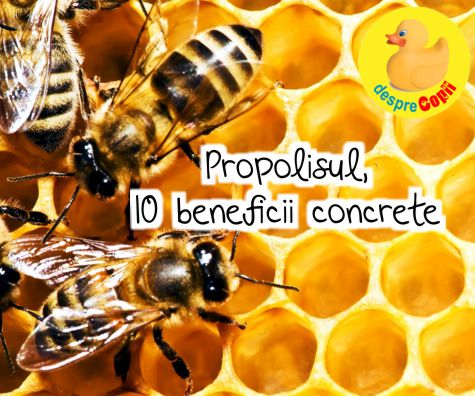Propolisul - 10 beneficii concrete pentru sanatatea familiei tale