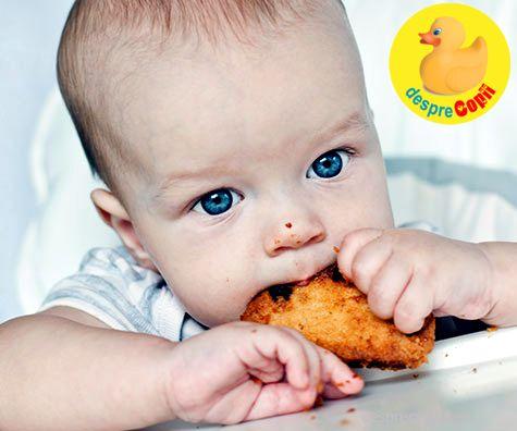 9 retete super sanatoase de biscuiti pentru bebelusi