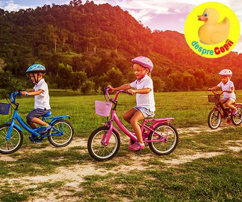 Safari pe bicicleta