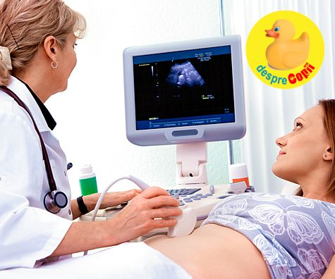 Sangerarile in primul trimestru de sarcina: ce trebuie sa stii