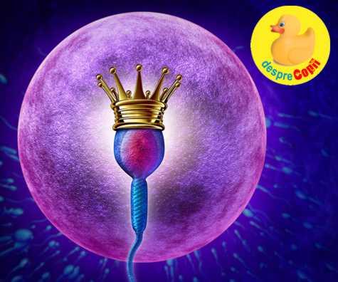 8 semne ale ovulatiei