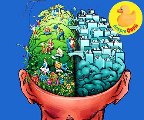 Creierul unui adolescent: despre vulnerabilitate, stres, emotie si lumea lor curajoasa