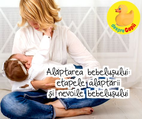 Alaptarea bebelusului, etapele alaptarii si nevoile bebelusului