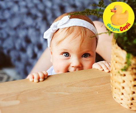 Bebelusul la 8-9 luni: ce stie sa faca