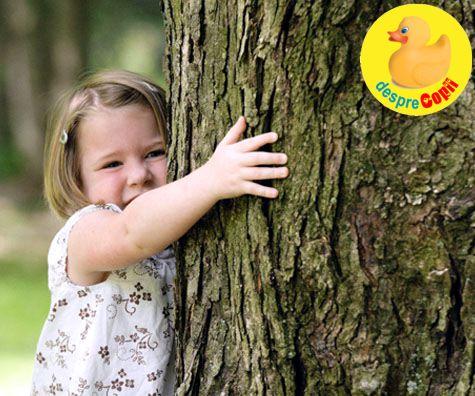 Padurea magica a dinozaurilor: intalnirea speciala cu copacii in Dino Parc Rasnov
