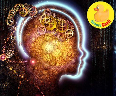 Creierul bebelusului: 5 lucruri esentiale care ii stimuleaza sau de-favorizeaza dezvoltarea