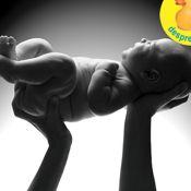 Cu cine va semana bebelusul si ce gene va mosteni? width=