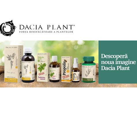 Dacia Plant se relanseaza!