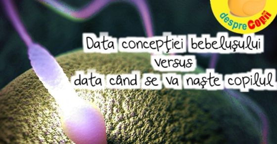 Despre data conceptiei si data cand se va naste copilul width=
