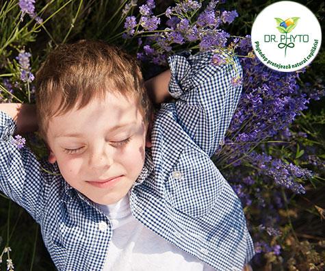 Fitoterapia pentru copii, ce te faci daca nu ai o gradina de ierburi?