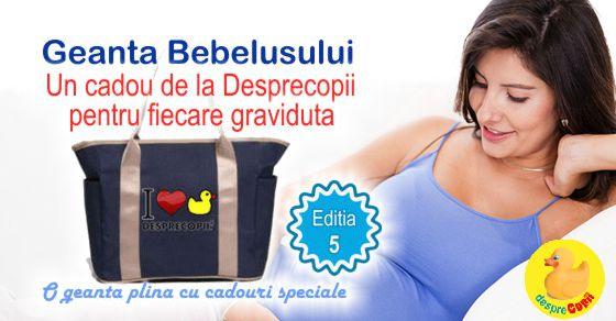 Geanta Bebelusului, cadou pentru gravidute width=
