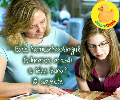 Este homeschoolingul (educarea acasa) o idee buna? 10 aspecte.