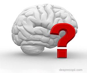 Ne spune IQ-ul tot despre inteligenta?