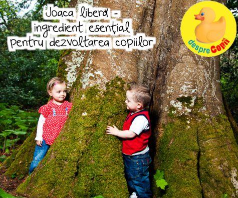 Joaca libera - ingredient esential pentru dezvoltarea copiilor