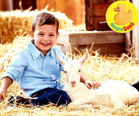 Laptele de capra in alimentatia copilului