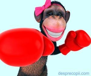 Ai o maimuta interioara?