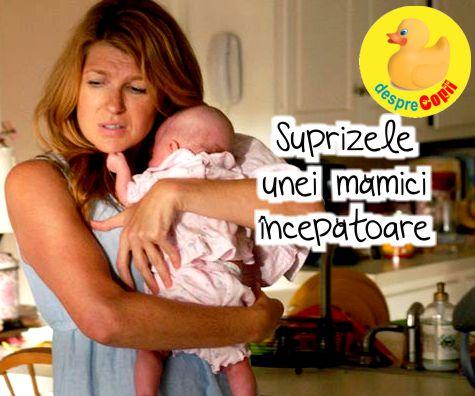 Suprizele unei mamici incepatoare