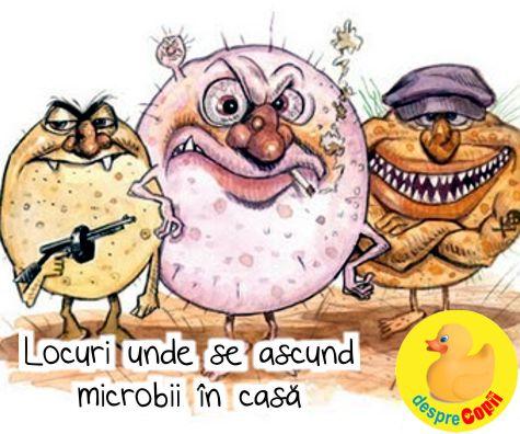 Locuri unde se ascund  microbii in casa