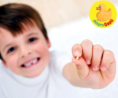 Pastreaza dintii de lapte ai copilului pentru ca sunt o sursa de celule stem