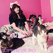 Momente din viata celor mega indragostiti de pisici