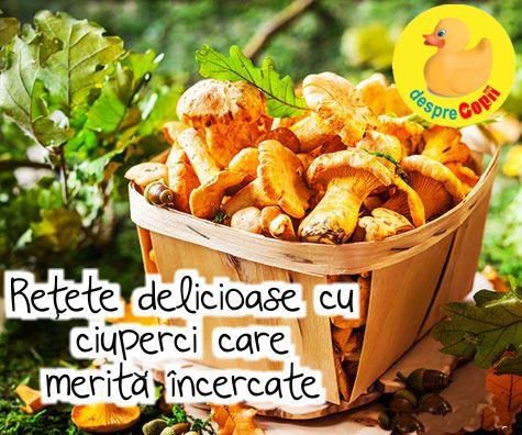 16 retete delicioase cu ciuperci care merita incercate