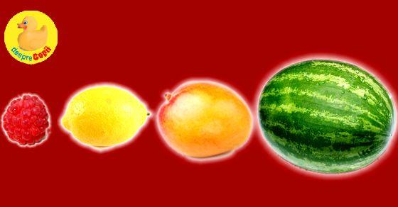 Sarcina pe saptamani, calatoria fructului catre nastere width=