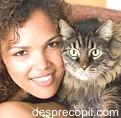 Sarcina si pisica - cum ne ferim de toxoplasmoza?