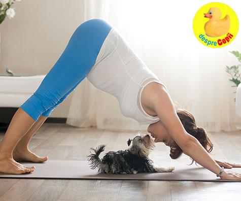 Exercitiile fizice in timpul sarcina: sfaturi si idei