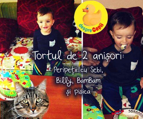 Tortul de 2 anisori: peripetii cu Sebi, Billy, BamBam si pisica